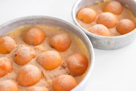 Apricot Cake with Cinnamon Sugar